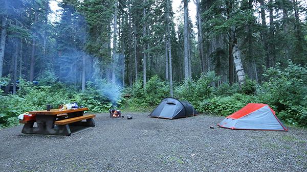camp_purden