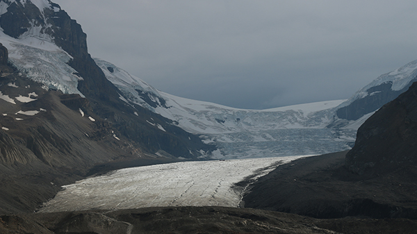 glacier_jasper