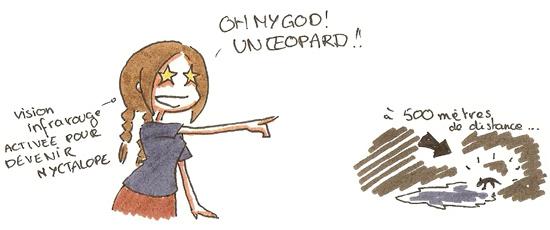 Un léopard !!