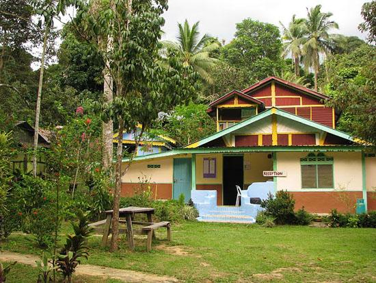 Guesthouse à Taman Negara