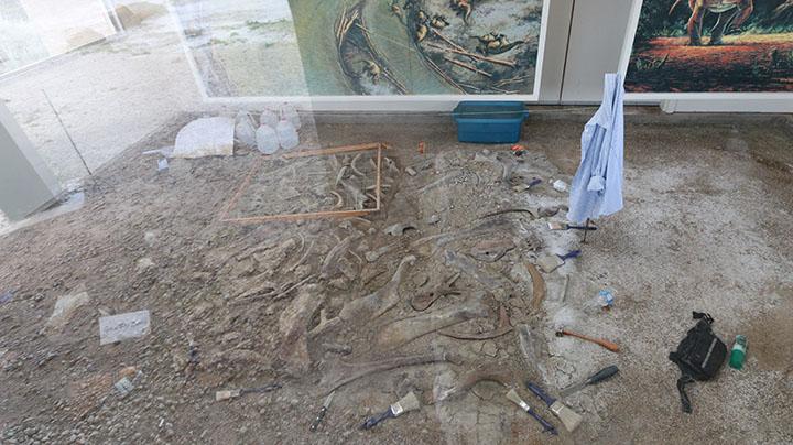 fouilles_archeologiques