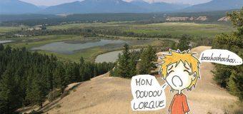 Jeudi 31 Juillet : Arrivée à Kootenay
